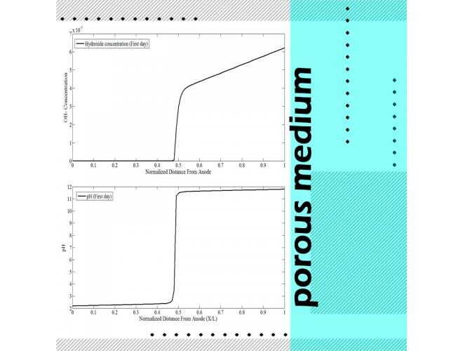 پروژه حل عددی معادله نرنست پلانک در محیط متخلخل  به کمک نرم افزار MATLAB