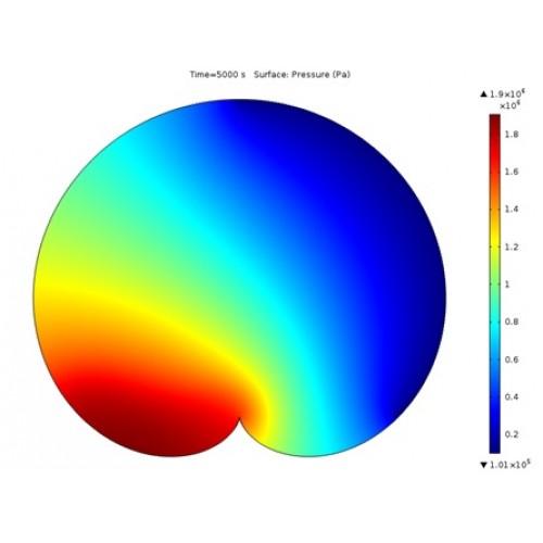 جریان دوفازی در محیط متخلخل  یک دلگون