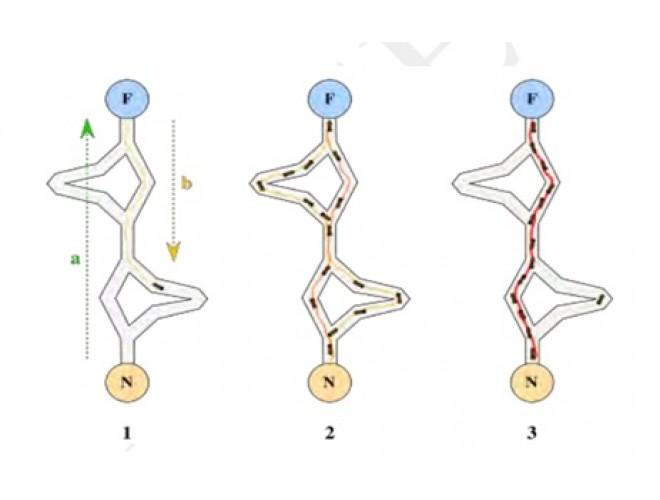 پروژه بهینهسازی مسیر حرکت AIM بر پایه شبیهسازی با استفاده از الگوریتمهای بهینهسازی ابتکاری با استفاده از نرم افزار MATLAB