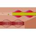 پروژه حل جریان و انتقال حرارت به صورت ناپایا درون کانال موج دار با شرط مرزی پریودیک با استفاده از نرم افزار فرترن