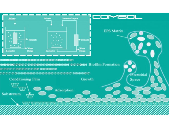 پروژه شبیه سازی گرفتگی حاصل از مواد پلیمری فراسلولی و محصولات میکروبی محلول در بیوراکتور غشایی با استفاده از نرم افزار کامسول ( COMSOL ) و به همراه فیلم آموزشی نرم افزار کامسول ( COMSOL )